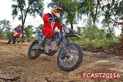 FCAST20116