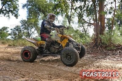 FCAST20113