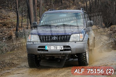 ALF 75156 (2)
