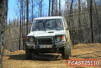 FCAST25110