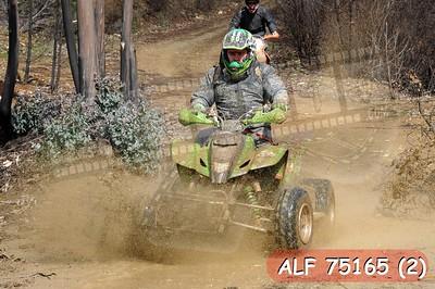 ALF 75165 (2)