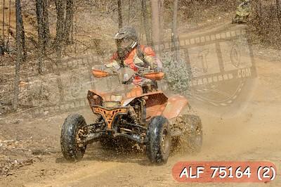 ALF 75164 (2)