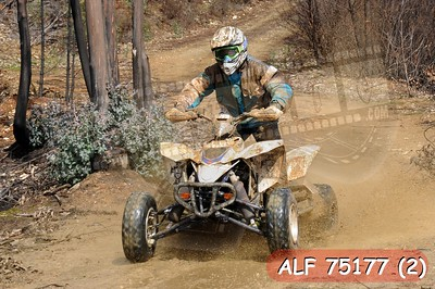 ALF 75177 (2)