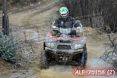 ALF 75158 (2)