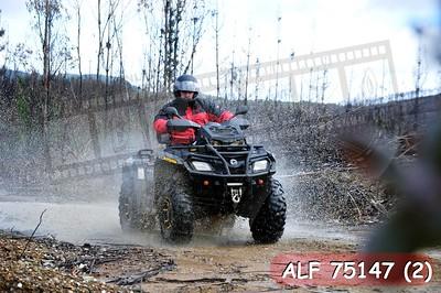 ALF 75147 (2)