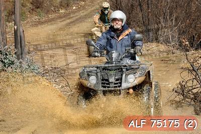 ALF 75175 (2)