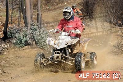 ALF 75162 (2)