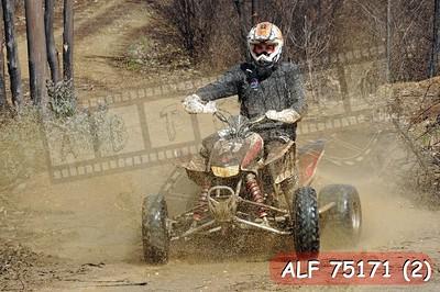 ALF 75171 (2)