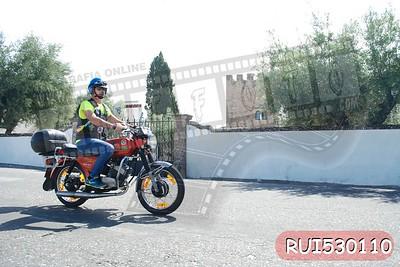 RUI530110