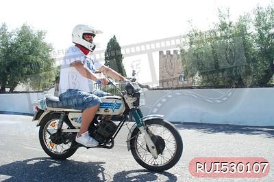 RUI530107