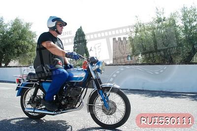 RUI530111
