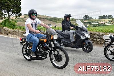 ALF75182