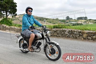 ALF75183