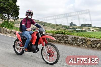 ALF75185