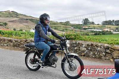 ALF75173