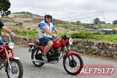 ALF75177