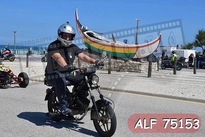 ALF 75153