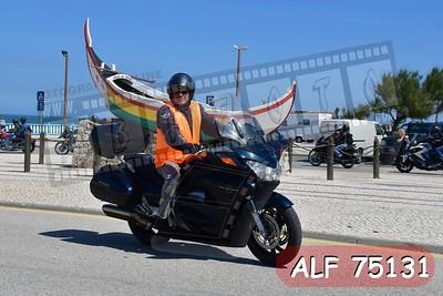 ALF 75131