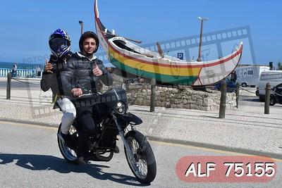 ALF 75155