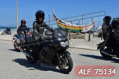 ALF 75134
