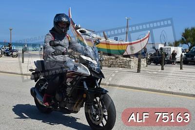 ALF 75163