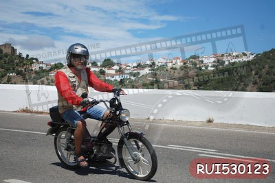 RUI530123