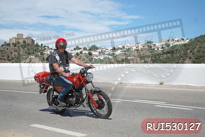 RUI530127