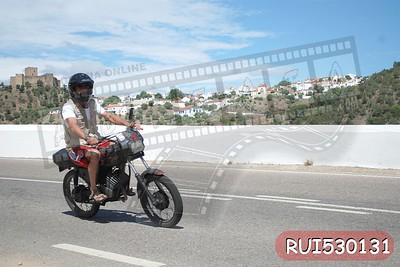 RUI530131