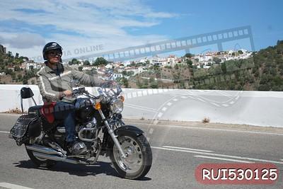 RUI530125