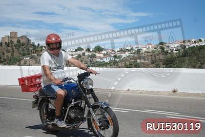 RUI530119