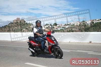 RUI530133