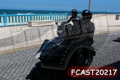 FCAST20217