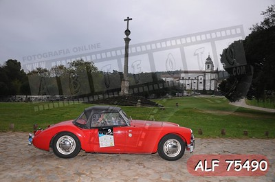 ALF 75490