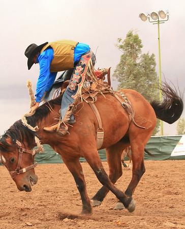 2014 Pima County Fair Rodeo