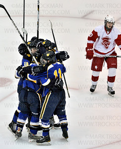 Wayzata players rejoice after scoring another goal against Benilde-St. Margaret's during the Trojans 5-2, Section 6-2A championship defeat of the Red Knights Wednesday, Feb. 27, at Mariucci Arena in Minneapolis.