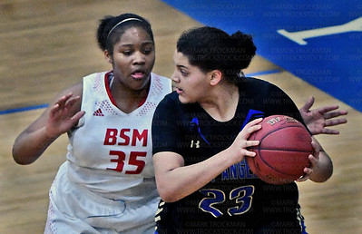 GIRLS HOOPS (HLA_BSM)