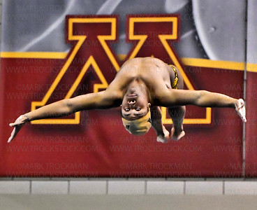 Boys Swim State 2A Final_Stephen Ayim_AND_1M Diving 01_TROCK_030318