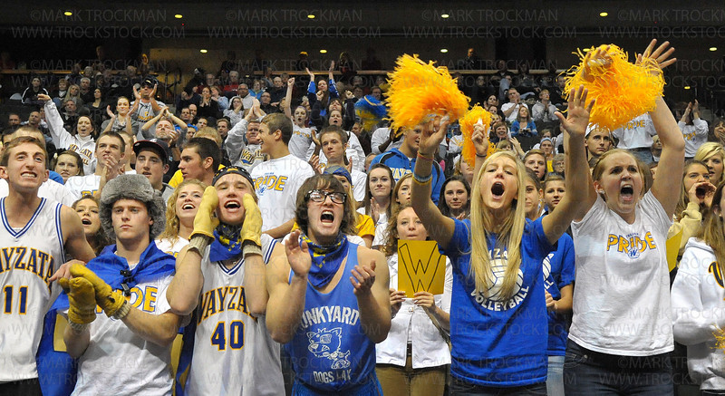 Wayzata fans came out en force to cheer their volleyball team's efforts at the class 3A state championship tournament Saturday, Nov. 13, at Xcel Energy Center in St. Paul.  The Trojans succumbed to the Lakeville North Panthers 25-13, 25-18, 25-13.