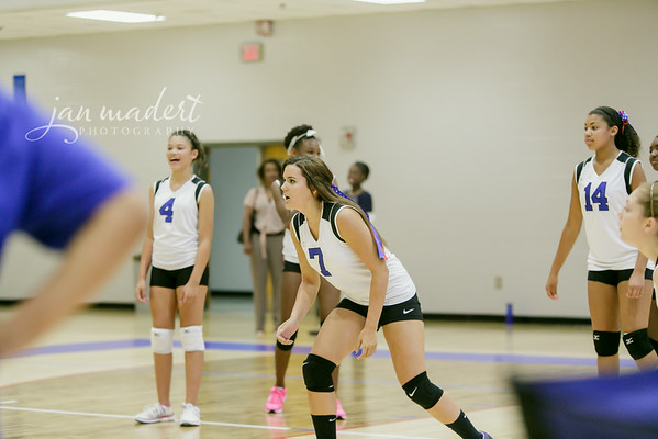 JMad_PRHS_Volleyball_9_0820_14_006