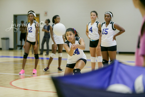 JMad_PRHS_Volleyball_9_0820_14_009