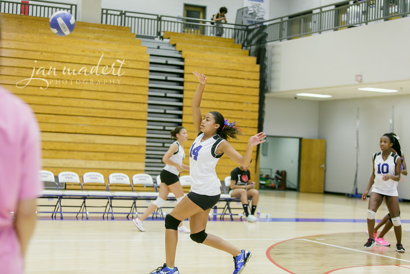JMad_PRHS_Volleyball_9_0820_14_008