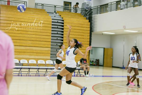 JMad_PRHS_Volleyball_9_0820_14_008