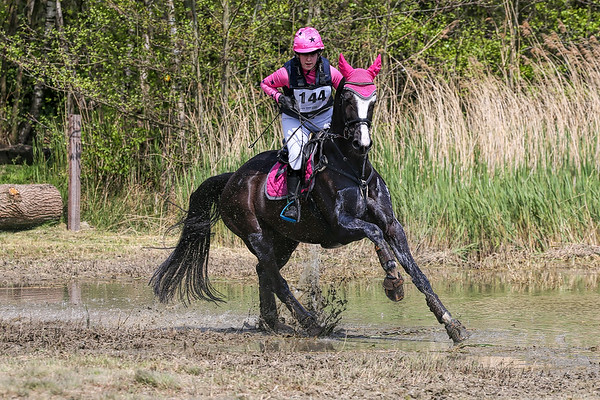 Eventing Minderhout 2017