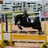 20140802__Palgrave_Horse_Show_148-4