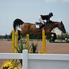 20140802__Palgrave_Horse_Show_149-13