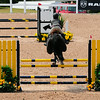 20140802__Palgrave_Horse_Show_148-6