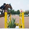 20140802__Palgrave_Horse_Show_149-21