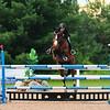 20140802__Palgrave_Horse_Show_148-263