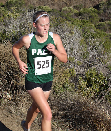 Paly X-C