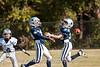 Cowboys vs Panthers-93